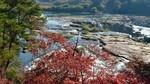 曽木の滝 (3).JPG